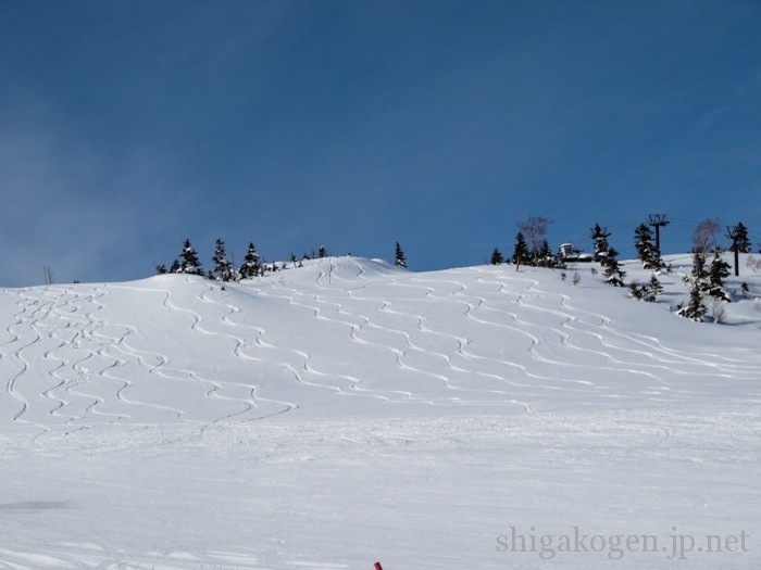 未圧雪, 景色が良い, 中央エリア, 一の瀬, パウダー-slops-寺子屋スキー場