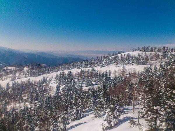 景色が良い, 初心者, ロングコース, ファミリー, パウダー, コブ-slops-焼額山スキー場