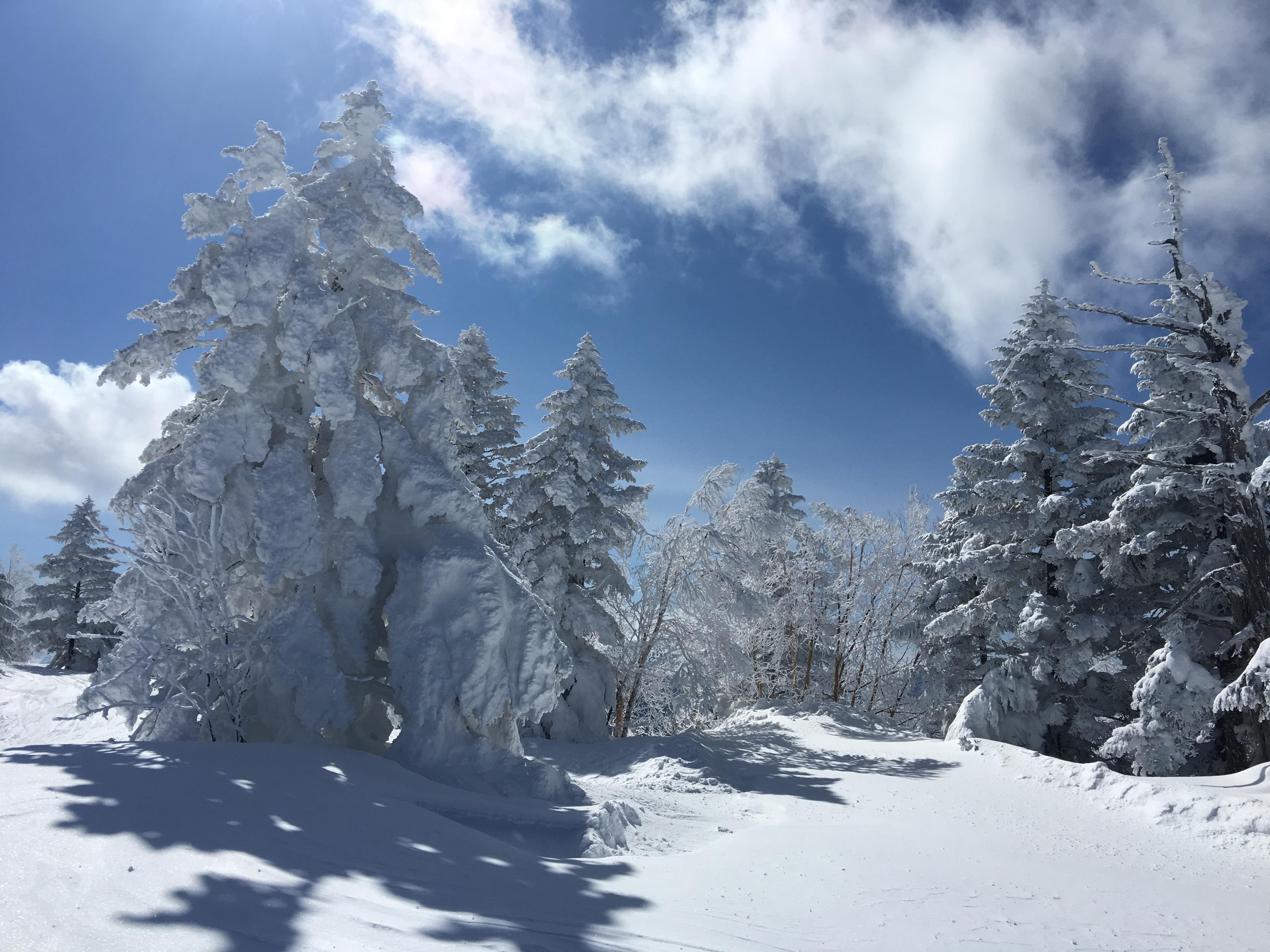 熊の湯-topic-2018シーズン開始!熊の湯スキー場11/18から一足先にオープンしたよ!
