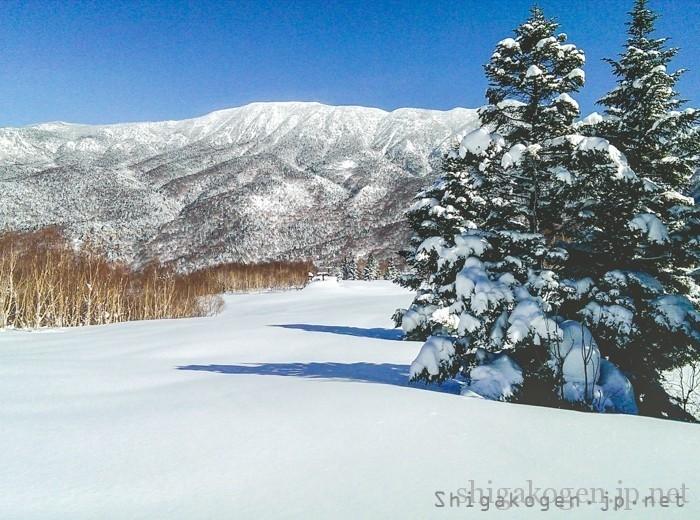 -fun-志賀高原の快適ロングコース